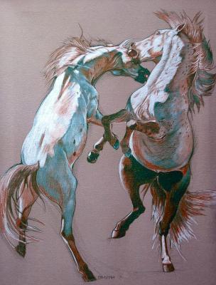 Fighting Stallions