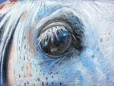Graybar's Eye
