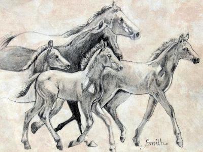 Parade of Foals