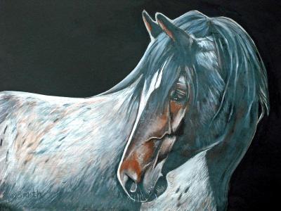 Mustang Roan
